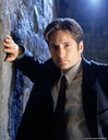 x-files-s5-duchovny-mulder-anderson-scully-pileggi-skinner-dvdbash-wordpress09.jpg