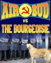air bud.png